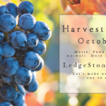 October 21st • Harvest Festival